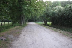04-07-2009_ 004 (